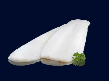 Halibut_Filete